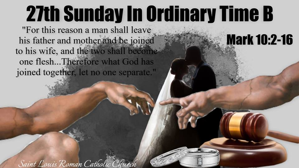 27th Sunday B