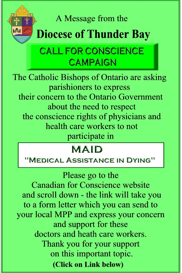 Call for Conscience Campaign Diocese of ThunderBay