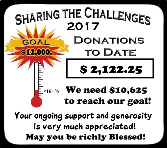 Sharing the Challenges 2017 June take 2