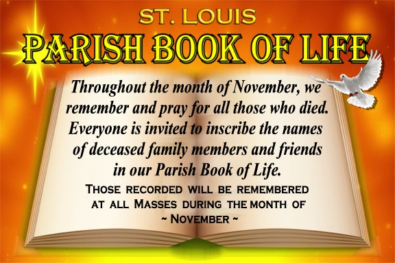 st-louis-book-of-life-6-by-4-for-fb